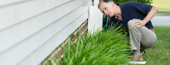 home inspections and the inspector